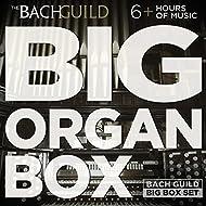 Big Organ Box
