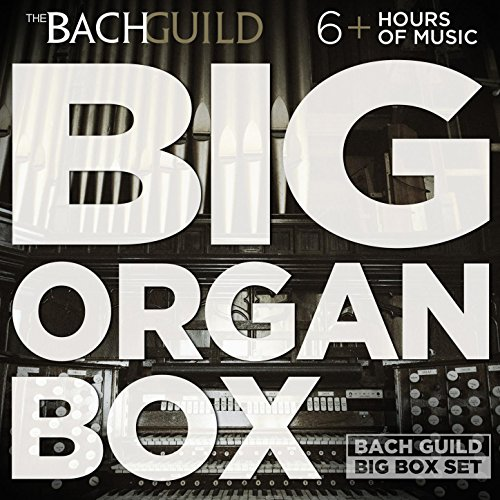 Big Organ Box