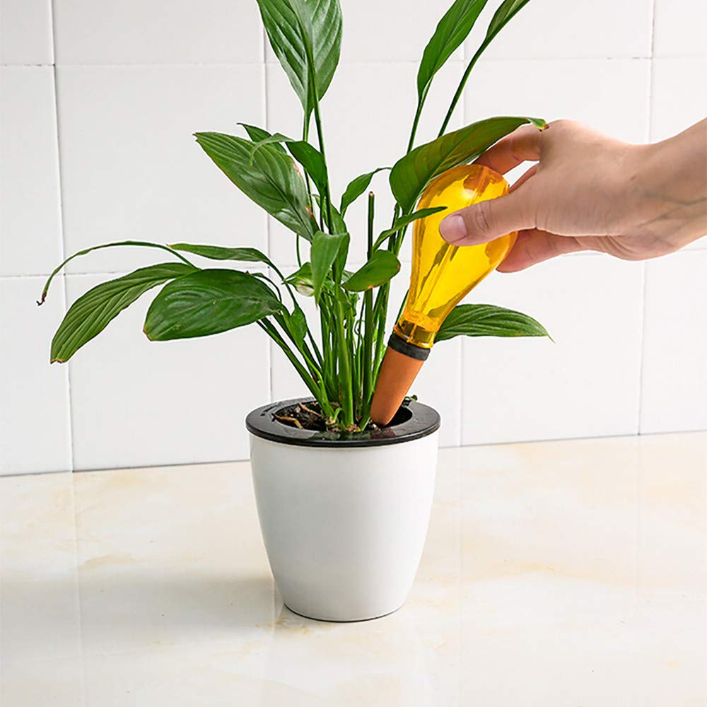 Free Post,Water Sprinkler,Automatic Watering Device Houseplant Plant Pot Bulb Globe Garden House Waterer