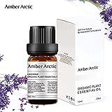 Lavender Essential Oil - 100% Pure Best Therapeutic Grade Essential Oil, Natural Aromatherapy Oil for Diffuser (10ML)