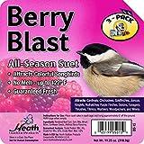 Heath Berry Blast Suet Cake 11.25 Oz (Pack of 3)