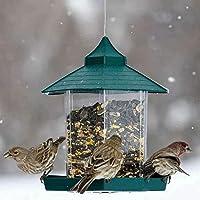 Dyyicun12 - Comedero para pájaros y nueces, contenedor