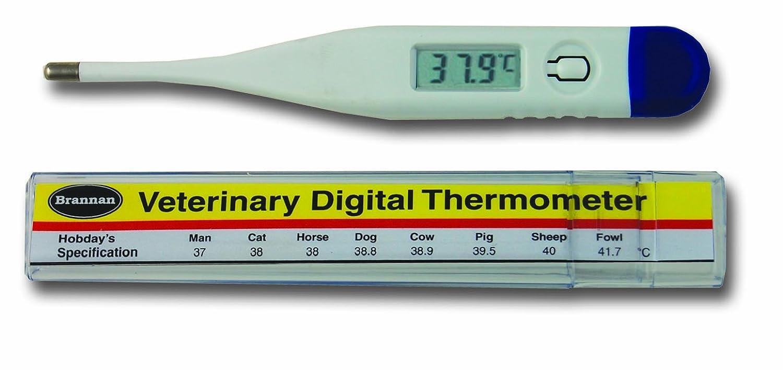 Digital termómetro de veterinario (con Hobday de Spec gráfico): Amazon.es: Productos para mascotas