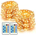 LED String Lights 66ft 200 LEDs TaoTronics Dimmable Festival Decorative Lights for Seasonal Holiday, Complete Waterproof, UL Listed( Copper Wire Lights, Warm White )-2 Pack