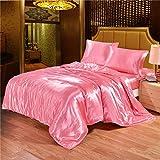 Dometool Color Silk Like Bedding Set Luxury Silky Satin Duvet Cover Flat Sheet Pillowcases Set,Twin