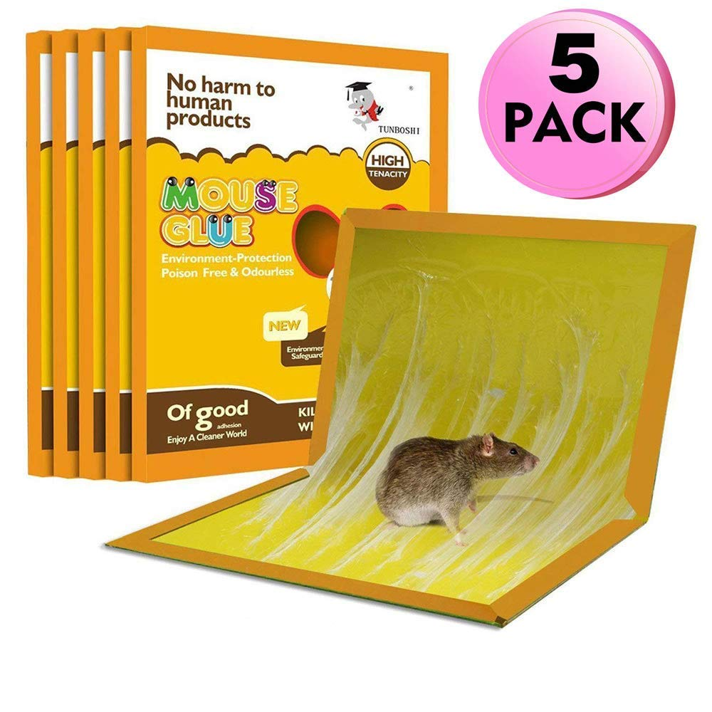 Mouse Trap, Mouse Rat Glue Boards, (5-Pack) Mouse Glue Traps, Mouse Size Glue Traps Sticky Boards Mouse Catcher Mice Professional Strength Glue Insect Lizard Spider Cockroach Rodent Snake Strongly Benz-AMG