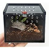 クモのトカゲのカエルのコオロギのカメペット繁殖のためのearlyadペット供給箱