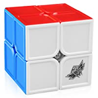 D-FantiX Cyclone Boys 2x2 Speed Cube Stickerless Magic Cube Puzzles Toys 50mm (Feihu Version)