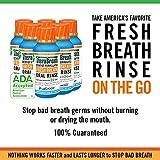 TheraBreath Fresh Breath Oral Rinse, Icy Mint, 3 oz Bottle