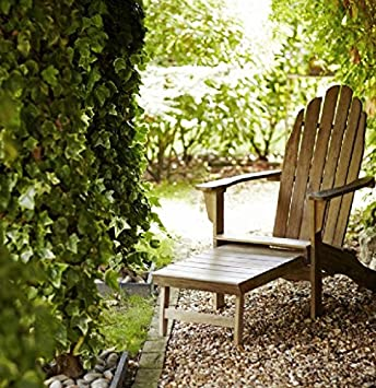 LeisureGrow Hanoi en bois Adirondack Chaise longue: Amazon ...