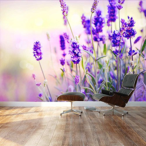 Large Wall Mural Beautiful Scenery of Lavender Field Vinyl Wallpaper Removable Decorating