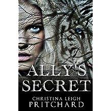 Ally's Secret (The C I N Series Book 3)