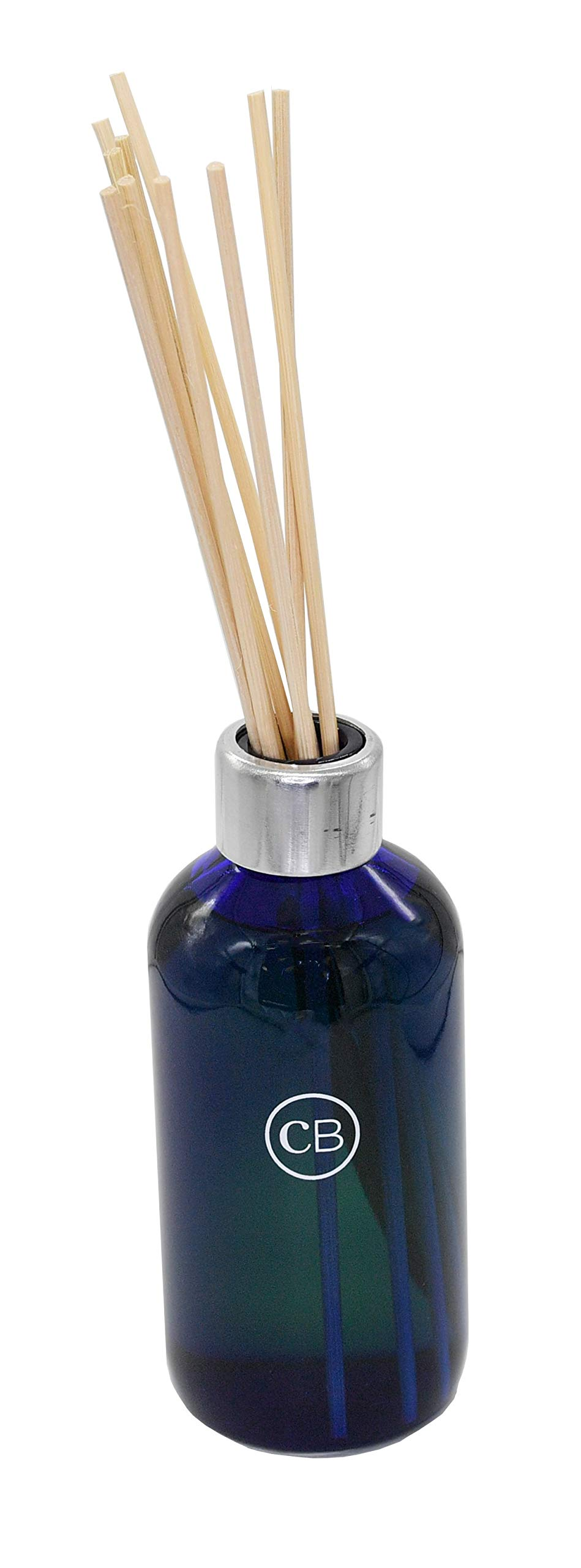 DPM Reed Diffuser Volcano Fragrance Size: 8 Ounce by DPM