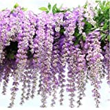 Coobl 3.6 Feet Artificial Wisteria Vine Ratta Silk Hanging Flower Plant, 12 Pieces, Purple