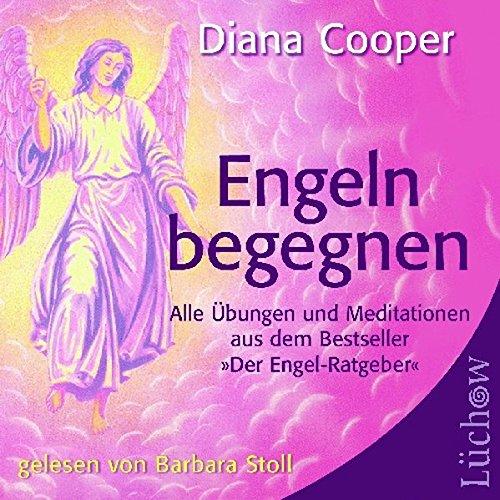 Engeln begegnen: Alle Übungen und Meditationen aus dem Bestseller