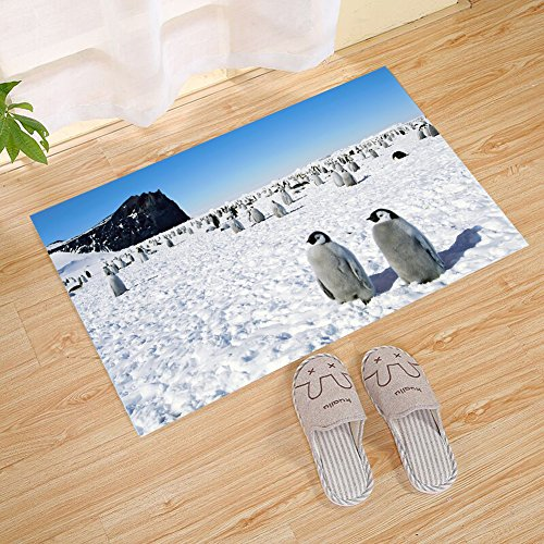 - FANNEE White Iceberg Blue Sea Cute Penguin South Pole Cool Small Door Mat, Outdoor Indoor Rug For Terrace, Kitchen Bathroom, Water Absorption, Garage, Patio, Busy Traffic Area