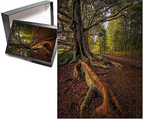 - Media Storehouse 252 Piece Puzzle of The Moreton Bay fig-Trees That line New Farm Road on Norfolk Island (12475975)
