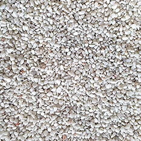 Grava de acuario - Blanco - Tropical Sustrato Decoración del tanque de peces de agua dulce 6 - 8 mm 5 kg: Amazon.es: Productos para mascotas