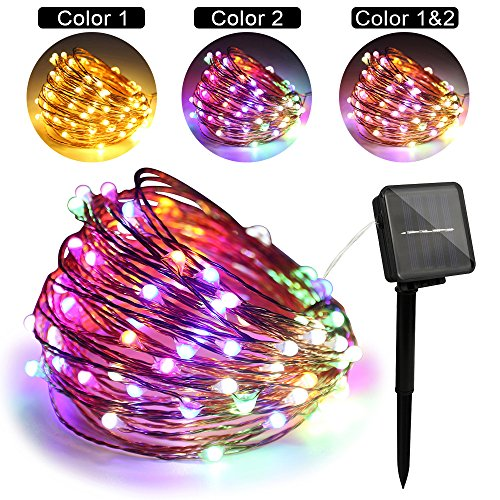 Dual Color Led Light String in US - 8