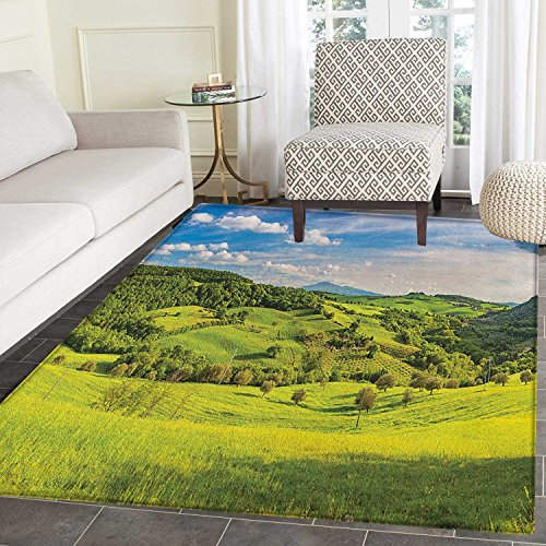 Tuscany Area Rug Carpet Tuscany Italy Sunlight Homestead Plantation Farms Pathway Greenery Print Living Dining Room Bedroom Hallway Office Carpet 5'x6' Sky Blue Apple Green