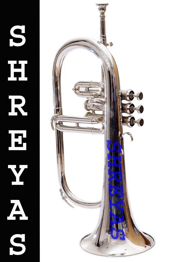 Bb Flat SILVER NICKLE Flugel Horn With Free Hard Case+Mouthpiece 128 by SHREYAS