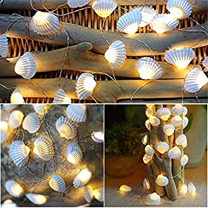 61TN%2BYNWxsL._SS300_ Best Seashell Wedding Decorations