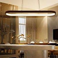 Modern LED Pendant Lights, Metal Island Hanging Lamp for Dining Table, Pendant Lamps Ceiling Lighting for Dining Room…