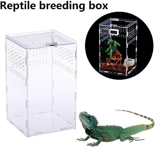 Augproveshak Caja de Reptiles Transparente, Tanques de cría de ...