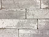 2.5x9.5 London Soft Gray Smoke Glazed Extruded Brick Wall Field Tile (SAMPLE)