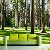 LHDLily 3D Large Mural Tv Sofa Background Wall Bedroom Living Room Photography Wood Nature Landscape Wallpaper Mural 400cmX300cm