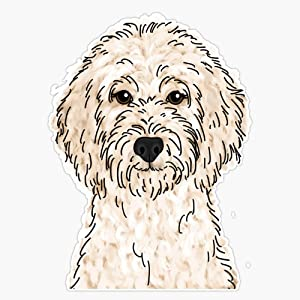 Cream Goldendoodle Sticker Vinyl Waterproof Sticker Decal Car Laptop Wall Window Bumper Sticker 5""