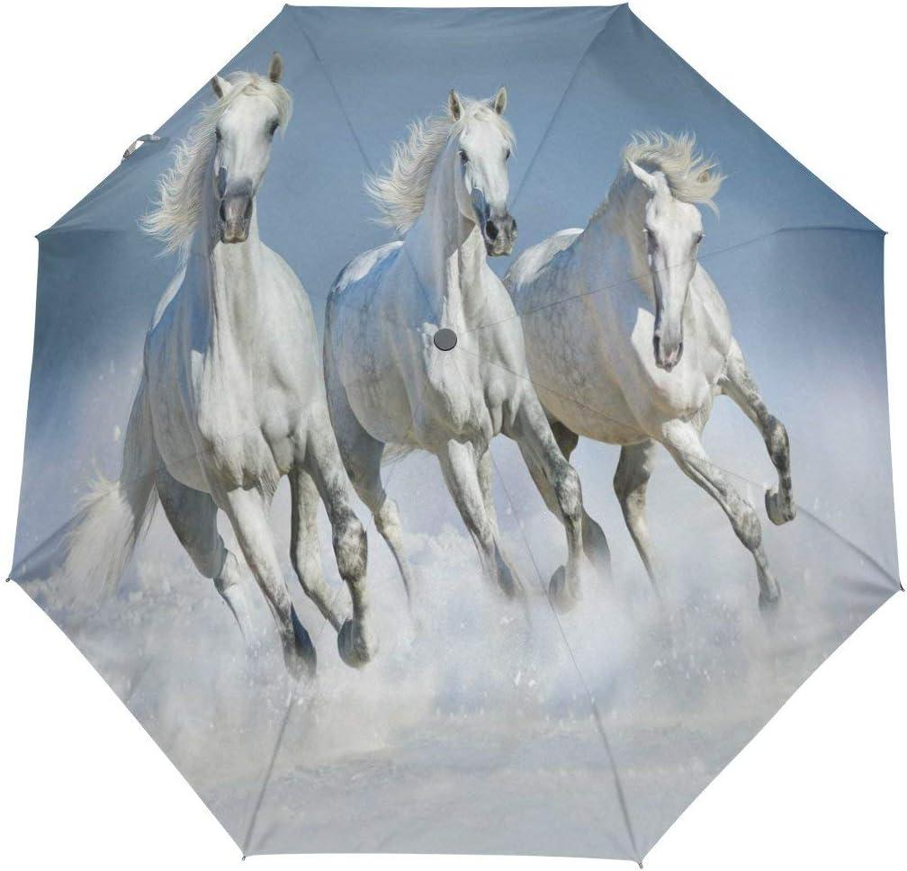 Doreen Dalton - Paraguas para Correr (3 Pliegues, Cierre automático), diseño de Caballo