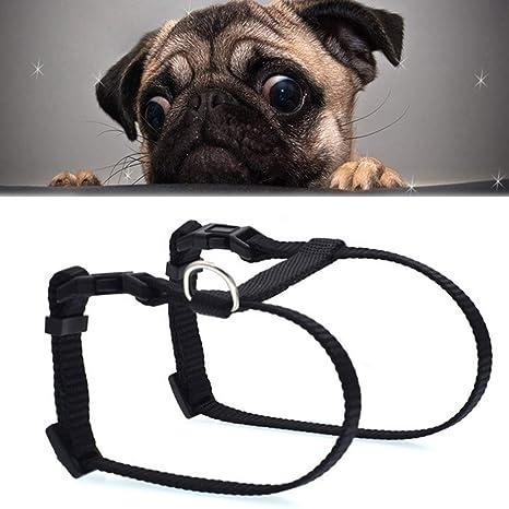 Collar del Animal doméstico, arnés del Animal domé Vender Bien ...