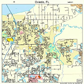 Oviedo Florida Map.Amazon Com Large Street Road Map Of Oviedo Florida Fl Printed