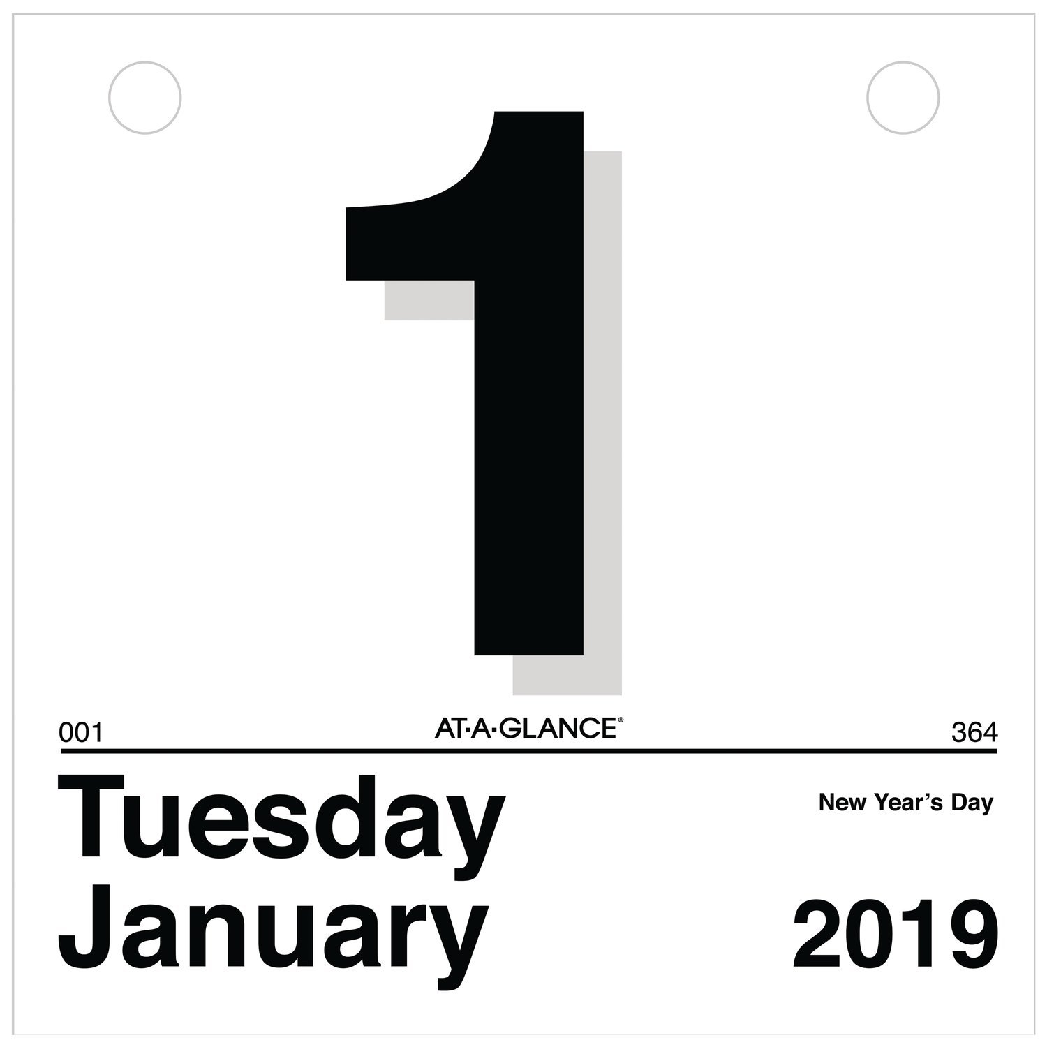 AT-A-GLANCE 2019 Daily Wall Calendar Refill, 6'' x 6'', Mini, One Page Per Day, ''Today Is'' Design (K1-50) by AT-A-GLANCE