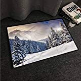 VIVIDX Print Bath Mat,Winter,European Mountain Hoar Frost,Machine-Washable/Non-Slip,16'x24'