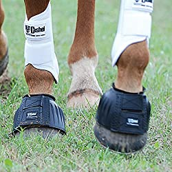 Cashel No Turn Rubber Bell Boots for Horses, Equine, Pair, Size Large, Color Black
