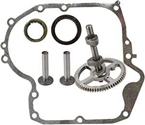 labwork 793880 New Camshaft Plus Sump Gasket 697110 Replacement for Briggs & Stratton 793880