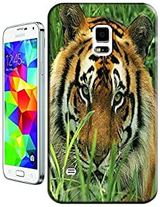 Tiger Case Cover Hard Back Cases Beautiful Nice Cute Animal hot selling cell phone cases for Samsung Galaxy S5 i9600 # 20