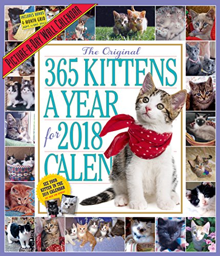 Kittens Picture-A-Day Wall Calendar 2018