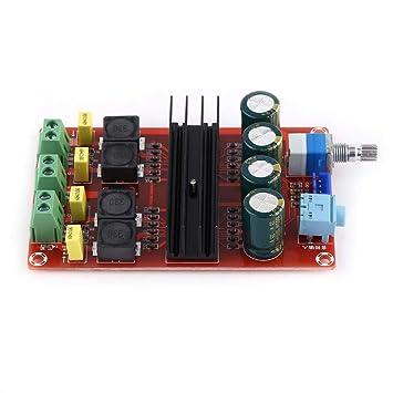 DC12-24V Amplificador Junta de Alta Potencia 2 * 100W Amplificador digital de doble canal Junta de receptor de audio Amplificador estéreo: Amazon.es: Coche ...