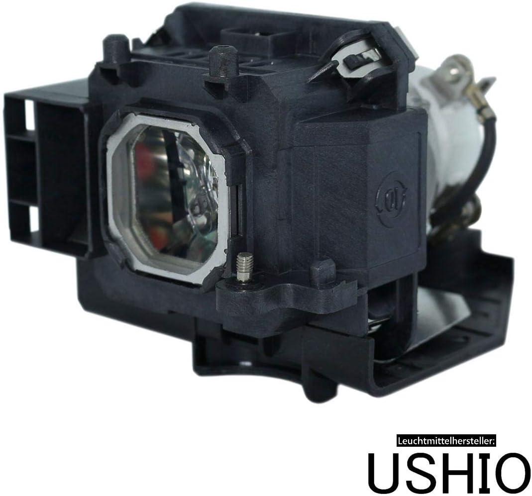 Lámpara para proyector NEC NP-M311W proyector (módulo): Amazon.es ...