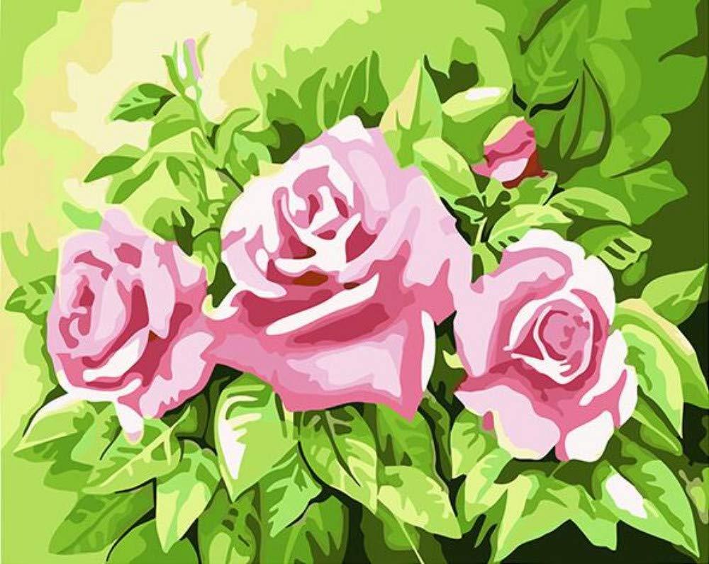 wanghan Pintura por números Hermosa Rosa Floral Pintura Bricolaje por Kit Digital Pintura De Lona Hogar Moderno Arte De Pared Imagen para La Sala De Arte