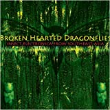 Brokenhearted Dragonflies: Insect Electronica