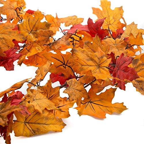 Leaf Banner - 3