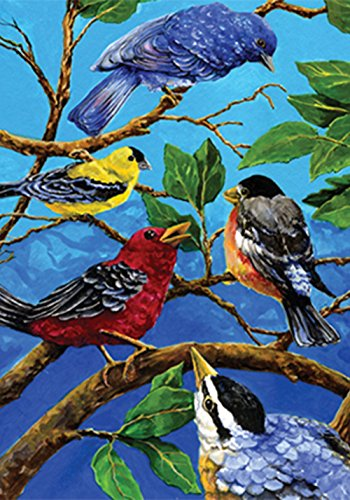 Toland Home Garden Birds On Blue 28 x 40 Inch Decorative Colorful Summer Bird Tree Branch House Flag