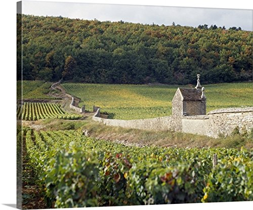 Canvas On Demand Premium Thick-Wrap Canvas Wall Art Print entitled Stone wall dividing vineyards, Clos St. Jacques, Gevrey-Chambertin, Cote-dOr, Burgundy, France (Chambertin Burgundy Gevrey)