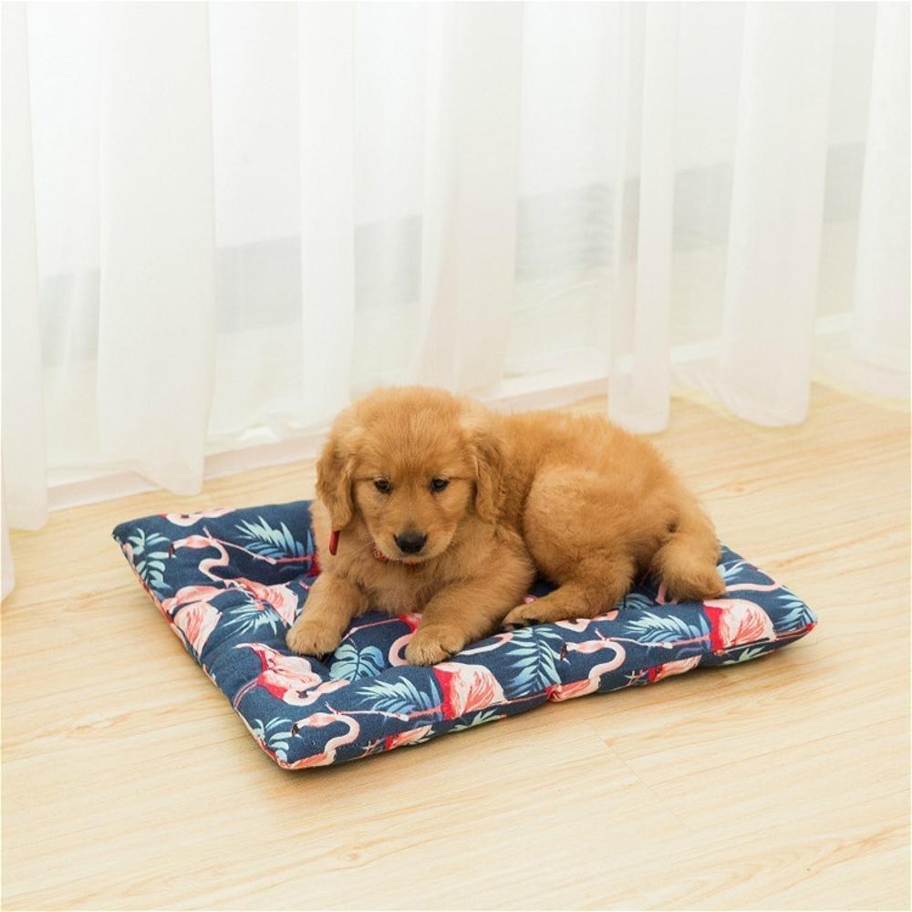C 3448cmWUTOLUO Pet Bolster Dog Bed Comfort Canvas Pet Litter Kennel Creative Dog mat (color   C, Size   34  48cm)
