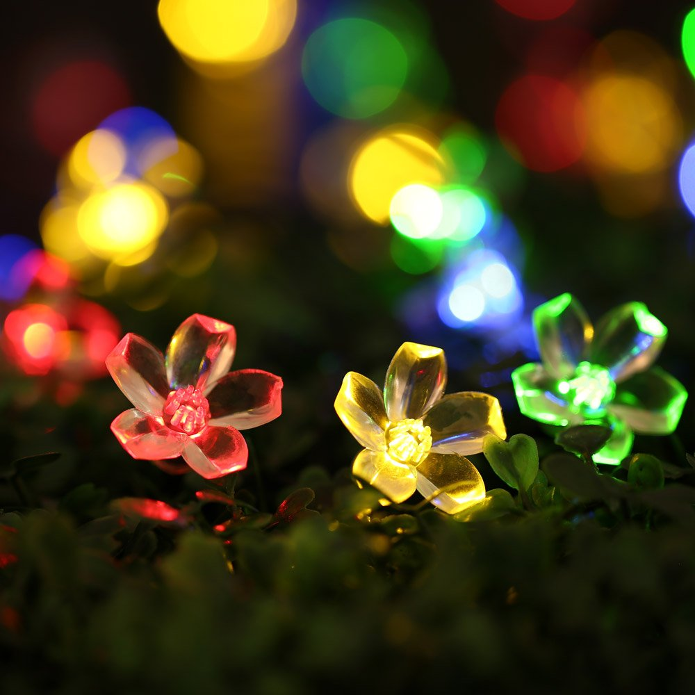Qedertek Solar String Lights, 21ft 50 LED Fairy Blossom Flower ...