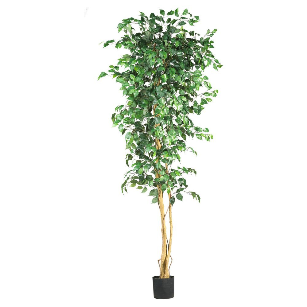 Decorative Indoor Trees Amazoncom Nearly Natural 5209 Ficus Silk Tree 6 Feet Green